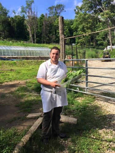 Chef getting produce from farmNugget